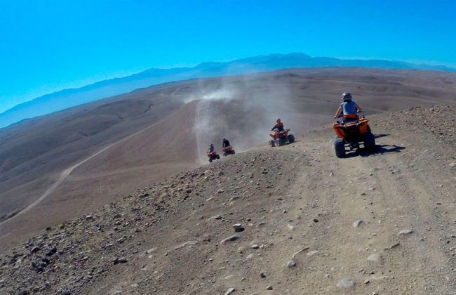 Four quadbikes driven in desert